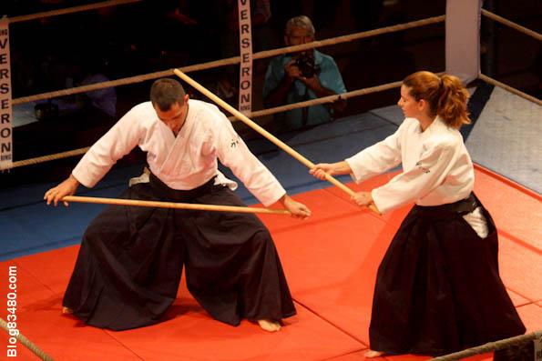 Arts martiaux blic bloc for Art martiaux